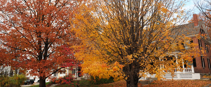 Liste de vérification pour préparer votre maison en vue de l'automne