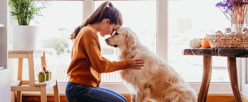How Pets Can Help With Mental Health